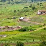 Promoting Community Based Sustainable Soil Management Practices for increasing Agriculture Productivity and minimizing Poverty